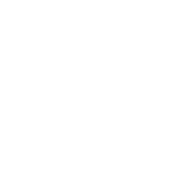The 481